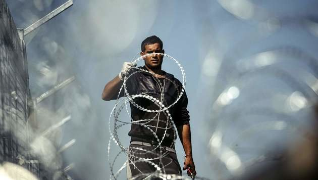 Arbeiten am bulgarisch-türkischen Grenzzaun (Bild: APA/AFP/DIMITAR DILKOFF)