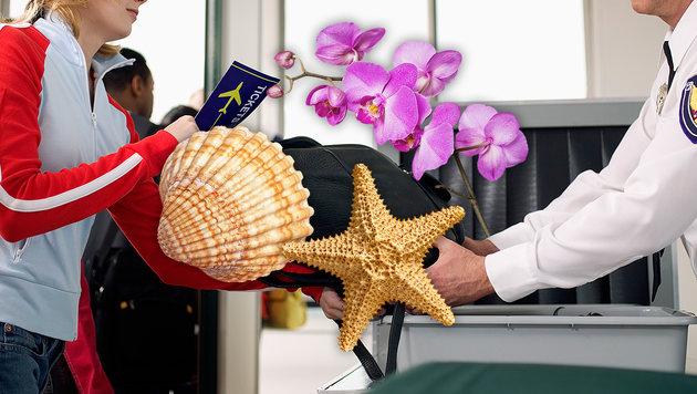 Welche Souvenirs Sie besser im Urlaubsland lassen (Bild: thinkstockphotos.de)