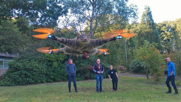 Holländer baut Drohnen aus ausgestopften Tieren (Bild: bartjansen.tv)