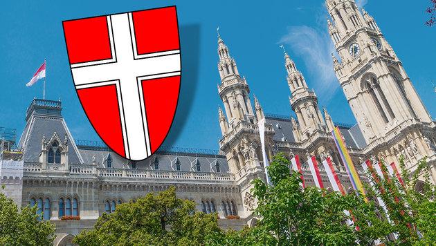 Stadt braucht Geld: Spart Wien Bezirke ein? (Bild: thinkstockphotos.de)