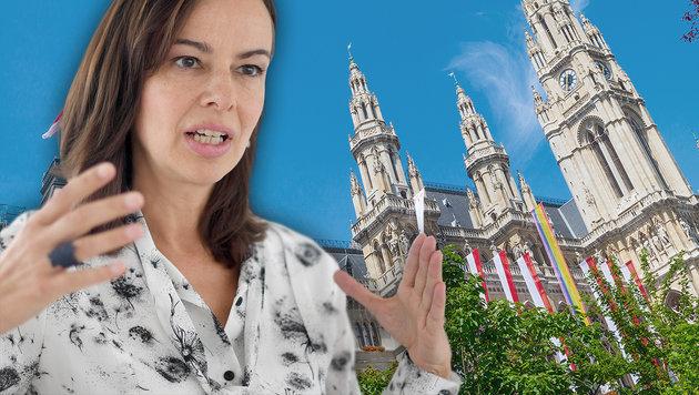 Scharfe Karmasin-Kritik an Rot-Grün (Bild: thinkstockphotos.de, APA/ROLAND SCHLAGER)