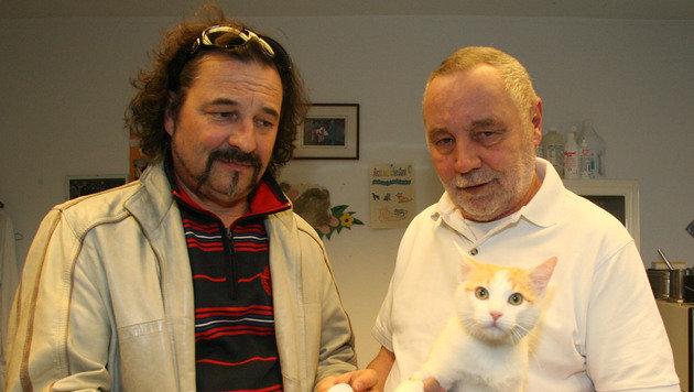 """Felix"" nach dem Schussattentat 2012 mit Besitzer Kurt Petritsch und Tierarzt Simon Knafl. (Bild: Klaus Kreuzer)"