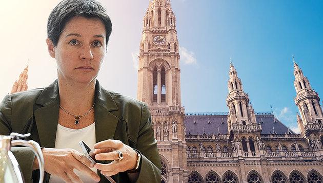 Sonja Wehsely (Bild: APA/HERBERT P. OCZERET, thinkstockphotos.de)