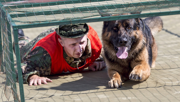 Ein russischer Hundeführer im Wettkampf (Bild: AP)