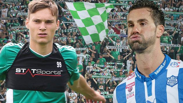 """Maierhofer an Rapid-Fans: """"Das muss aufhören!"""" (Bild: GEPA)"""