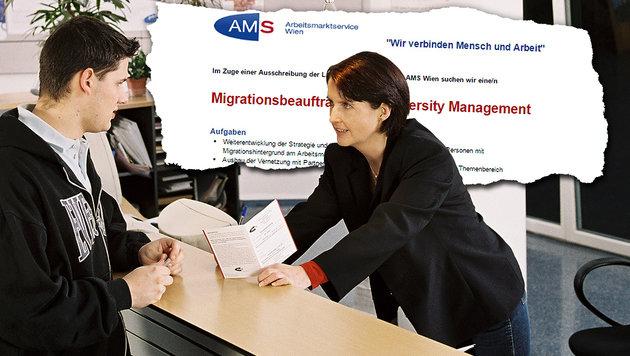 Wiener AMS sucht Beauftragten für Migration (Bild: AMS/Petra Spiola, AMS)