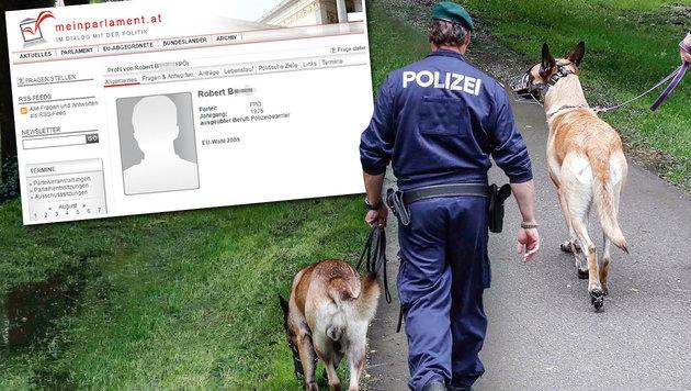 Polizei-Hundeführer wegen Kinderpornos vor Gericht (Bild: meinparlament.at, Markus Tschepp (Symbolbild))