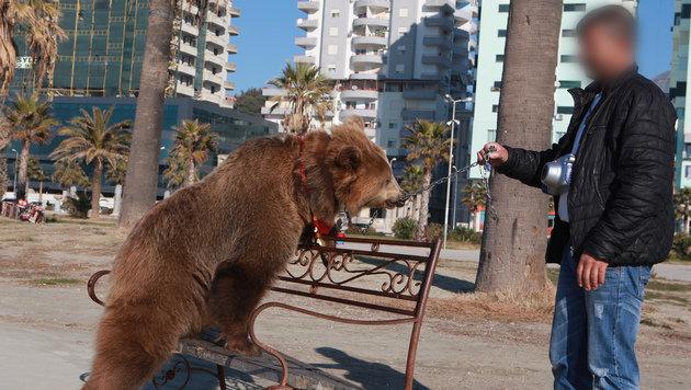 """In der sengenden Hitze führt """"Jetas"""" Besitzer sie an einer Kette durch touristische Hotspots. (Bild: Vier Pfoten)"""