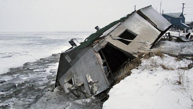 Alaska: Ganzes Inseldorf flieht aufs Festland (Bild: AP)