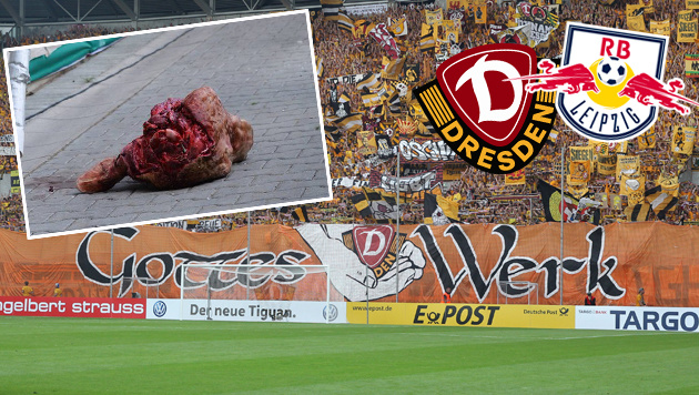 Bullenkopf Wurf gegen RB-Leipzig: Heftige Strafe! (Bild: GEPA, Dresden, RB Leipzig, twitter.com)