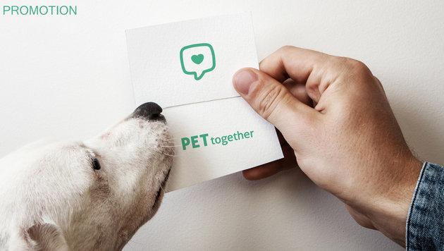 """Neue """"Petsharing""""-App bringt Tierhalter zusammen (Bild: PetTogether)"""