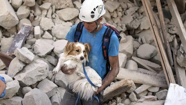 Nach schwerem Beben: Ganz Italien zeigt Herz (Bild: EPA/MASSIMO PERCOSSI)