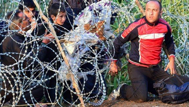 Flüchtlinge durchbrechen einen Grenzzaun zwischen Serbien und Ungarn. (Bild: AFP)