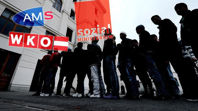 Harsche Kritik an neuem Job-Projekt für Asylwerber (Bild: APA/Hans Klaus Techt, AMS, WKO, Sozialministerium)