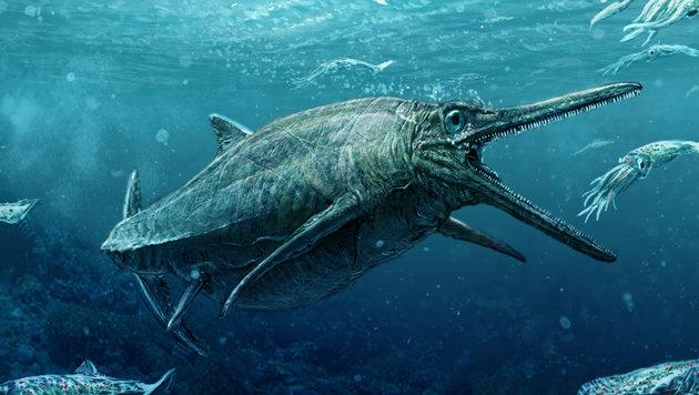 Diese Zeichnung ist dem gut erhaltenen Fossil nachempfunden. (Bild: APA/AFP/University of Edinburgh/TODD MARSHALL)