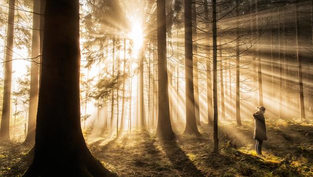 Die besten Fotos der Welt jetzt in Österreich (Bild: Mario Haberl)