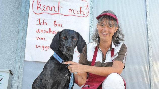 Fendt fand den Besitzer des Hundes. (Bild: Franz Crepaz)