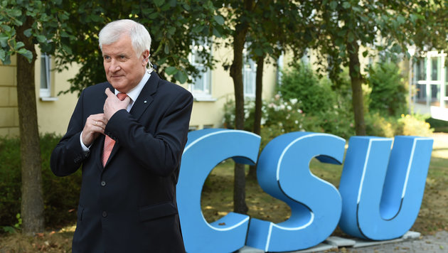 CSU-Chef Horst Seehofer (Bild: APA/AFP/CHRISTOF STACHE)