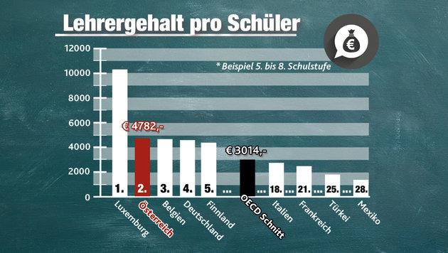 """�sterreichs Schulsystem auf dem Pr�fstand (Bild: """"Krone""""-Grafik)"""