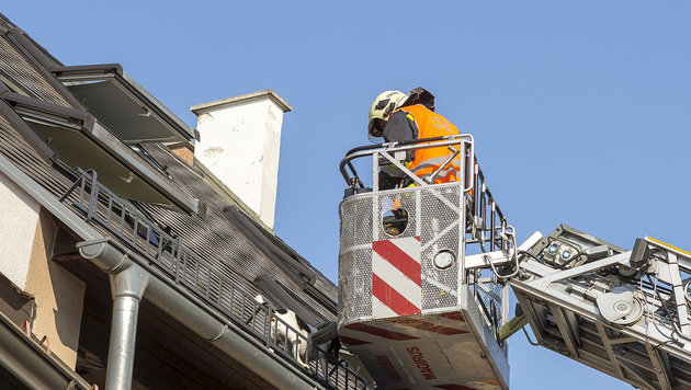 Kremser Feuerwehr rettete Hund von Hausdach (Bild: APA/FF Krems/Manfred Wimmer)
