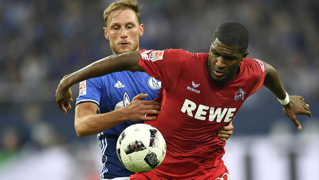 Peter Stögers 1. FC Köln schockt Schalke mit 3:1! (Bild: Associated Press)