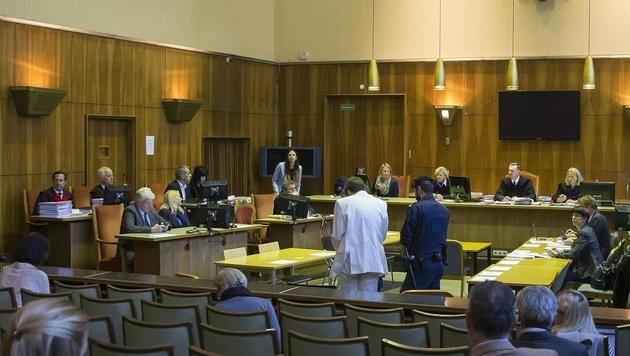 Der Amok-Prozess wird im Grazer Straflandesgericht verhandelt. (Bild: APA/ERWIN SCHERIAU/APA-POOL)