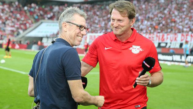 Köln-Trainer Peter Stöger und Leipzig-Coach Ralph Hasenhüttl (Bild: GEPA)
