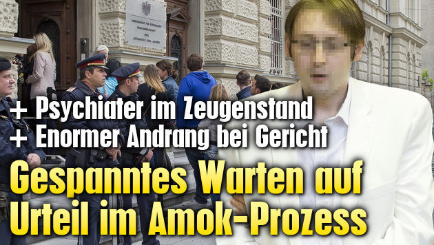 Graz: Gespanntes Warten auf Urteil im Amok-Prozess (Bild: APA/ERWIN SCHERIAU)