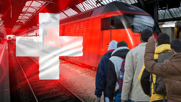 Schweiz weist ab sofort fremde Straftäter aus (Bild: dpa/Sebastian Kahnert)