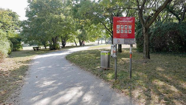 Spaziergängerin (39) in Wiener Park vergewaltigt (Bild: Gerhard Bartel)