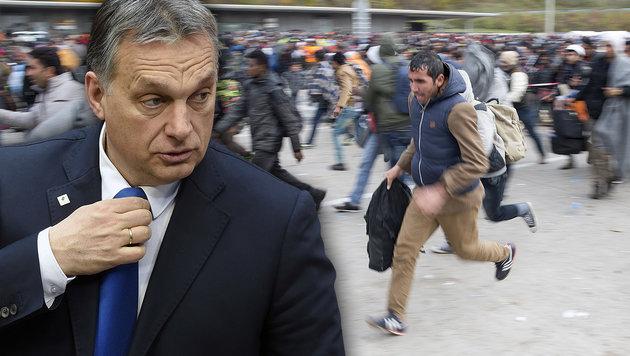 Ungarns Ministerpräsident Viktor Orban ist ein vehementer Gegner der Flüchtlings-Umverteilung. (Bild: APA/ERWIN SCHERIAU, AFP/JOHN THYS)