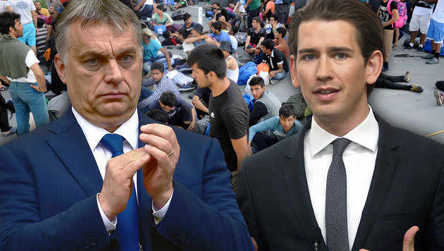 "Kurz: ""Orbans Asylpolitik nicht verurteilen"" (Bild: AFP/Attila KISBENEDEK, AP/Ronald Zak, APA/AFP/OLIVER BUNIC)"