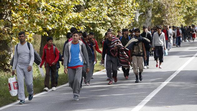 Flüchtlinge auf dem Weg von Serbien nach Ungarn (Bild: The Associated Press)