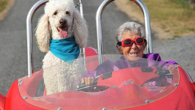 Norma Bauerschmidt mit ihrem Hund Ringo unterwegs auf einem speziellen Moped (Bild: facebook.com/Driving Miss Norma)