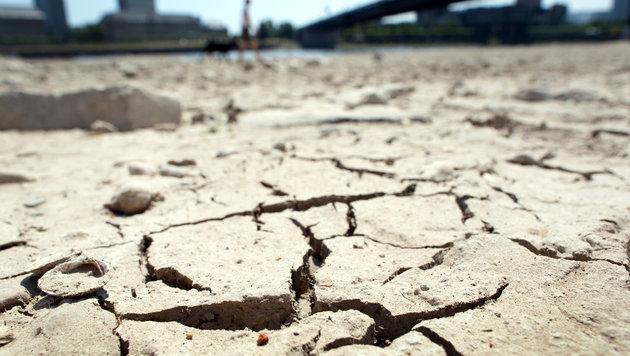Forscher erwarten Mega-Dürre im Südwesten der USA (Bild: APA/dpa/Martin Gerten)