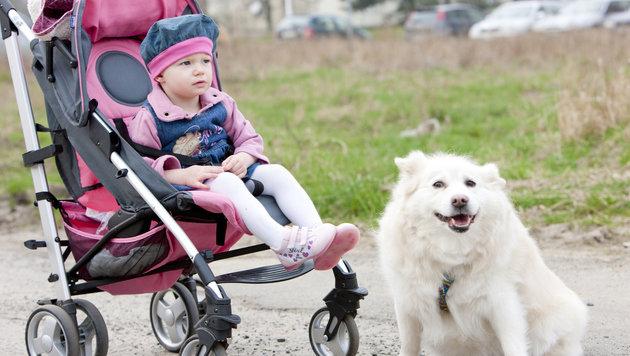 Kinder mit Hund erkranken seltener an Asthma (Bild: thinkstockphotos.de)
