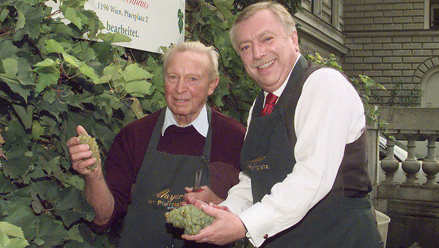 Weinlese im Jahr 2000 (Bild: GERHARD BARTEL)