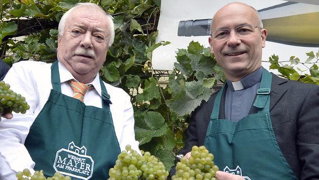 Bürgermeister Michael Häupl und Dompfarrer Anton Faber bei der Weinlese am Schwarzenbergplatz (Bild: APA/HERBERT PFARRHOFER)