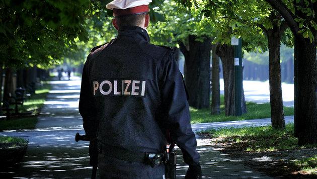 Schüsse bei Dealer-Jagd im Wiener Prater (Bild: Reinhard Holl, APA/Roland Schlager)