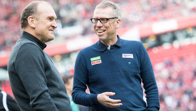 Peter Stöger (rechts) durfte mit seinen Kölnern erneut jubeln! (Bild: APA/dpa/Marius Becker)