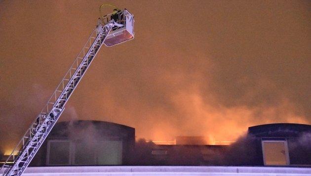 Großeinsatz: Dach in Wien brannte lichterloh (Bild: MA68/Lichtbildstelle)