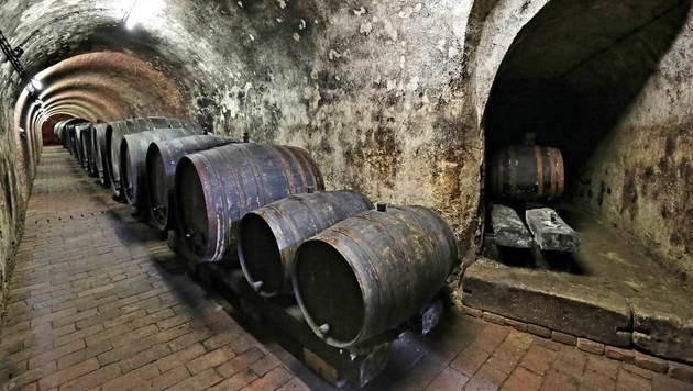 """Auch dieser Weinkeller war Schauplatz im """"Polt""""-Krimi. (Bild: Klemens Groh, Kronen Zeitung)"""