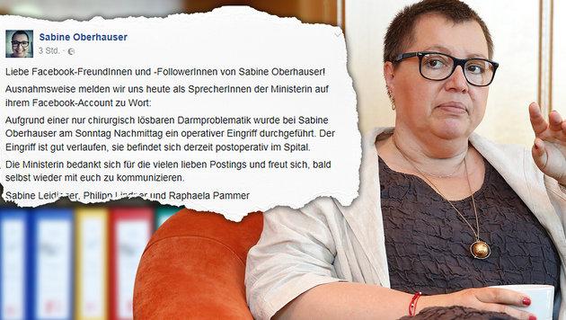 Große Sorge um Ministerin Oberhauser (Bild: Facebook.com, Martin A. Jöchl (Archivbild))