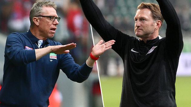 Stöger und Hasenhüttl rocken deutsche Bundesliga (Bild: GEPA)