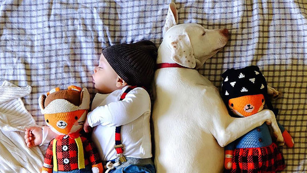 Baby und traumatisierte Hündin sind beste Freunde (Bild: hund mit kind instagram)