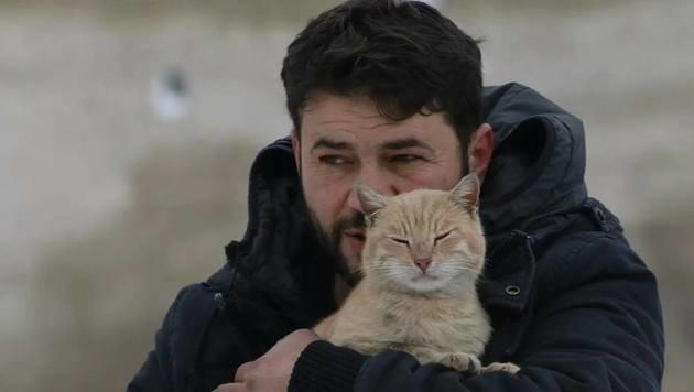 """Mohammad Alaa Aljaleel kümmert sich im zerbombten Aleppo um die zurückgelassenen Katzen. (Bild: twitter.com/Il gattaro D""""aleppo)"""