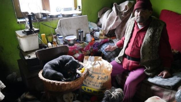 "Rumänisches Ehepaar versorgt 144 kranke Hunde (Bild: Verein ""RespekTiere"")"