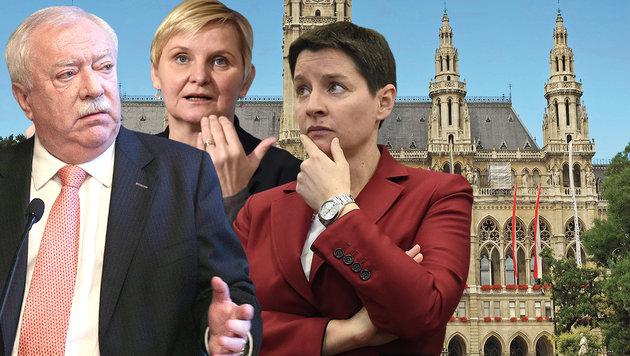 Wien: Das verdienen unsere Stadtpolitiker wirklich (Bild: APA/HELMUT FOHRINGER, APA/GEORG HOCHMUT, thinkstockphotos.de)