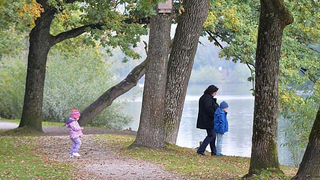Am Wochenende zeigt sich Herbst von bester Seite (Bild: APA/BARBARA GINDL)