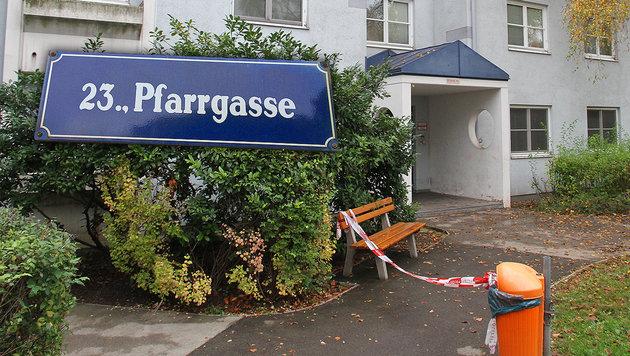 Bursch (15) in Wien niedergestochen: Täter gefasst (Bild: Andi Schiel)